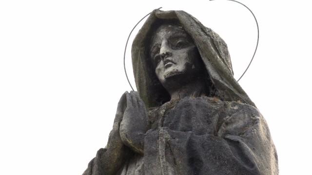 Kwesta na częstochowskich nekropoliach